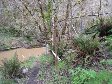North Fork Elk River Turbidity Threshold Sampling Station